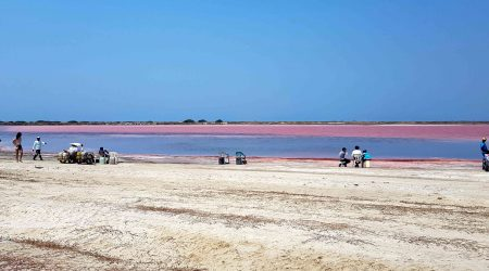 Sea-Pink-Of-Galerazamba-Cartagena-Tour-Red-Sea-2