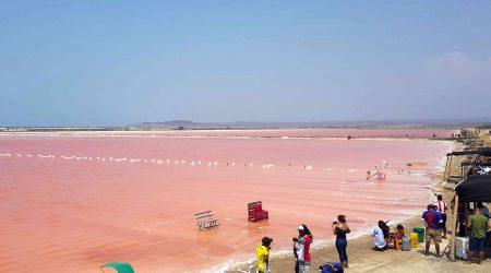 Sea-Pink-Of-Galerazamba-Cartagena-Tour-Red-Sea-4