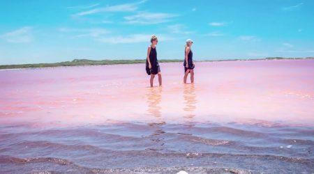 Sea-Pink-Of-Galerazamba-Cartagena-Tour-Red-Sea-5